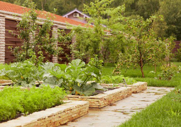 Ландшафтный дизайн садово-огородная зона