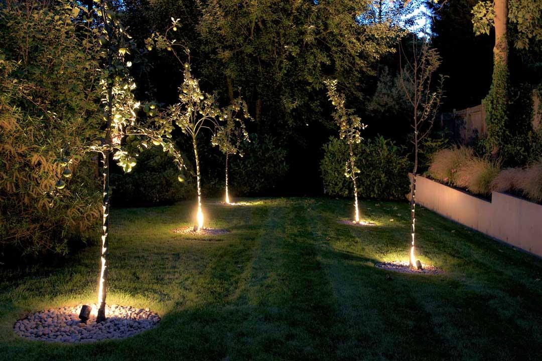 подсвечивание деревьев снизу